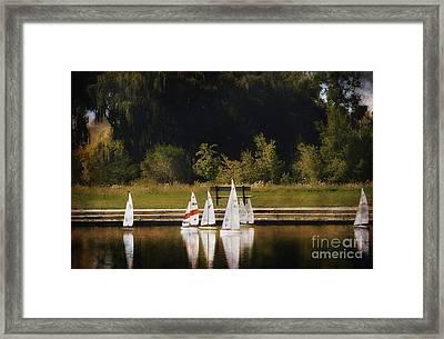 Sailboat Regatta Framed Print by Elaine Manley