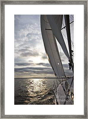 Sailboat Sailing Beneteau 49 Charleston Harbor Framed Print by Dustin K Ryan