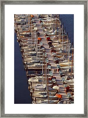 Sailboats At Moorage Framed Print by Harald Sund