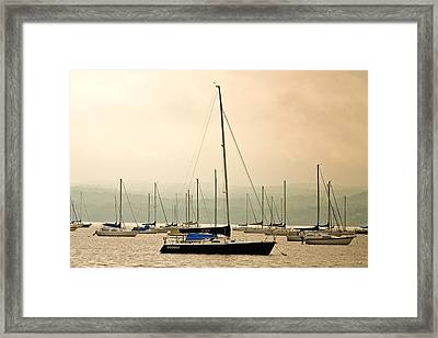 Sailboats Moored In The Harbor Framed Print by Ann Murphy