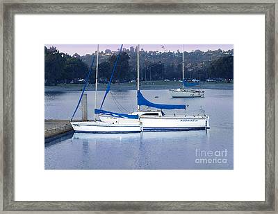 Sailboats San Diego Framed Print by Betty LaRue
