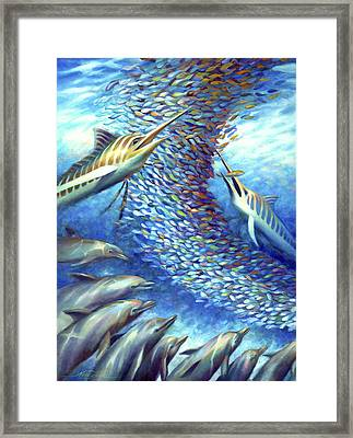 Sailfish Plunders Baitball I - Marlin And Dolphin Framed Print by Nancy Tilles