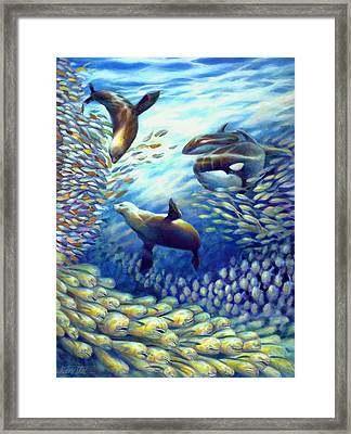 Sailfish Plunders Baitball IIi - Dolphin Fish Seals And Whales Framed Print by Nancy Tilles
