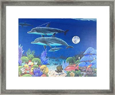 Sailfish Splash Park 2 Framed Print by Carey Chen