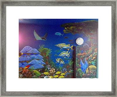 Sailfish Splash Park 9 Framed Print by Carey Chen