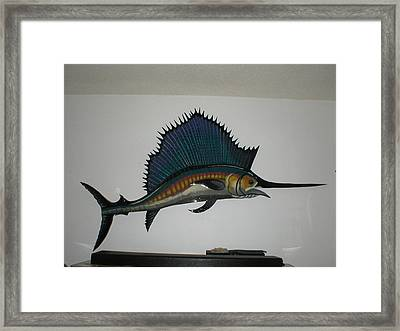 Sailfish Framed Print