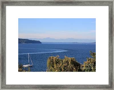Sailing Framed Print by Billie-Jo Miller