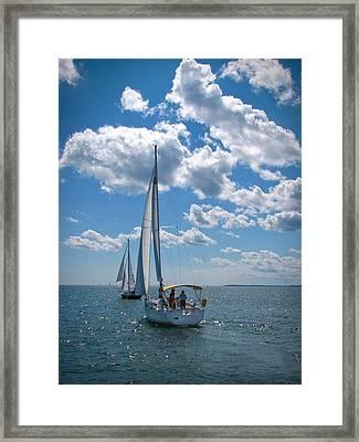 Sailing Framed Print by Cindy Haggerty