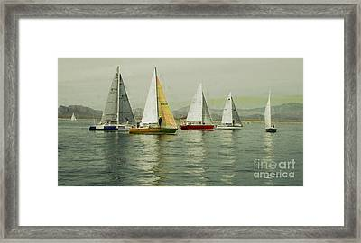 Framed Print featuring the photograph Sailing Day Regatta by Julie Lueders