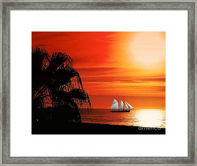 Sailing In Mexico Framed Print