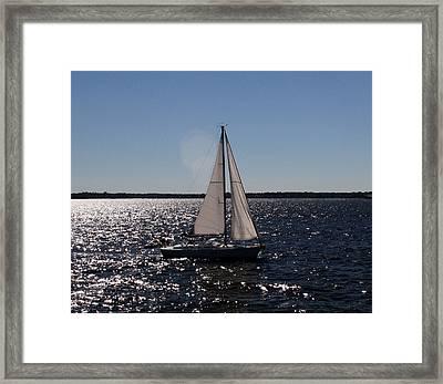Sailing On The Bay2 Framed Print