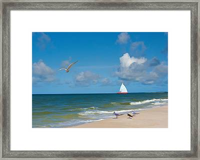 Sailing On The Gulf Of Mexico Framed Print by Delores Knowles