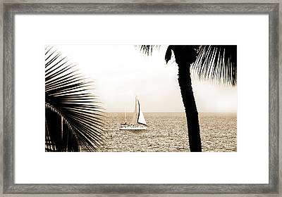 Sailing The Pacific Framed Print