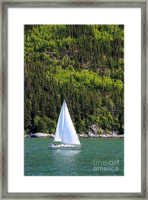 Framed Print featuring the photograph Sailing The Wilderness by Laurinda Bowling