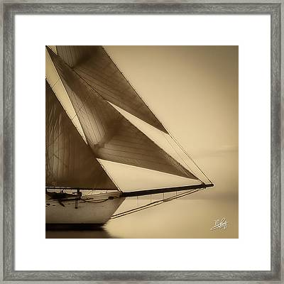 Sails Framed Print by Michael Petrizzo