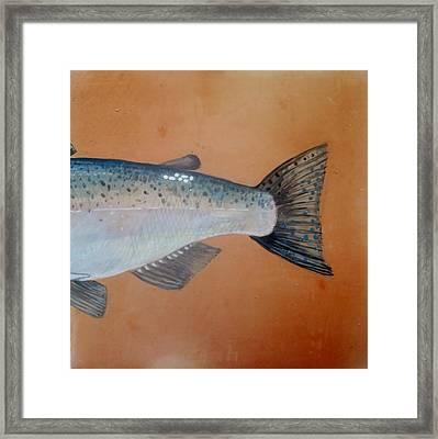 Salmon 2 Framed Print by Andrew Drozdowicz
