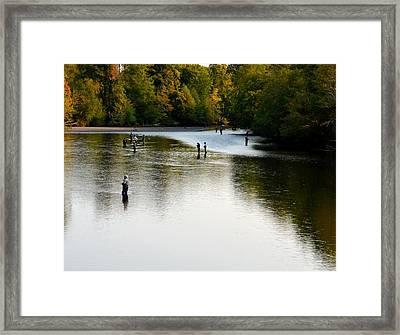 Salmon Hunting Skok Style Framed Print by Mark Bowmer