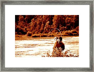Salmon Is Running Framed Print by Tanya  Searcy