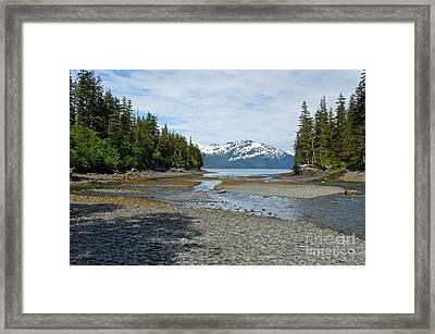 Salmon Run Lagoon Framed Print