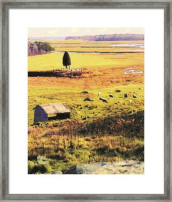 Salt Marsh Pasture Framed Print by Richard Stevens