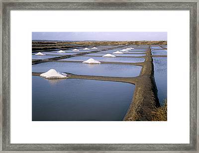 Salt Pans Framed Print by Veronique Leplat