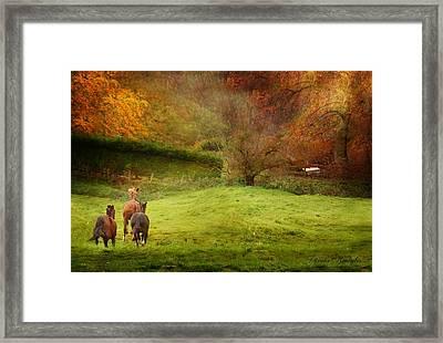 Salthrop Park Framed Print by Dorota Kudyba