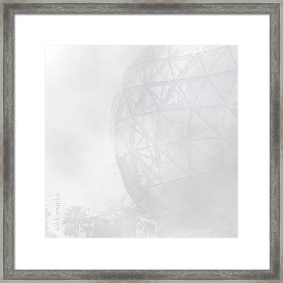 Salvador Framed Print