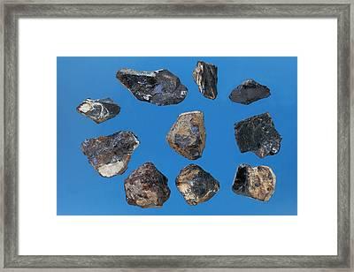 Samarskite Samples Framed Print by Dirk Wiersma