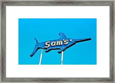 Sam's Framed Print by Matthew Bamberg
