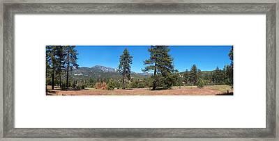 San Bernardino Forest Vista Framed Print by Glenn McCarthy Art and Photography