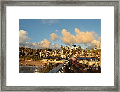 San Clement Pier And Coast Framed Print by Timothy OLeary