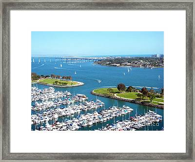 San Diego Marina And Bay Framed Print