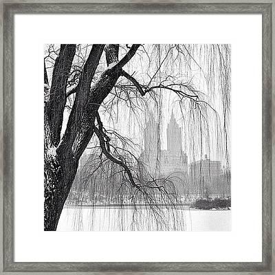 San Remo Framed Print