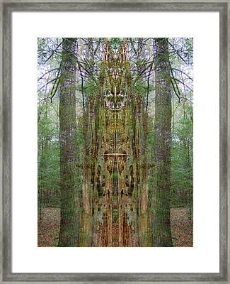 Sanctuary Framed Print by Lynzi Wildheart
