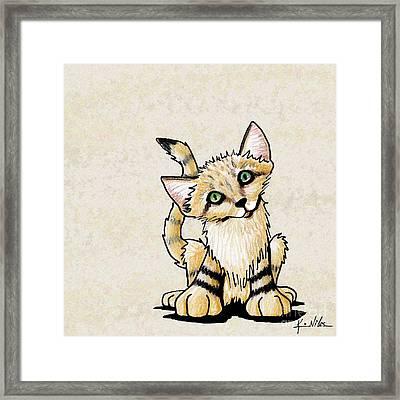 Sand Cat Kitten Framed Print by Kim Niles