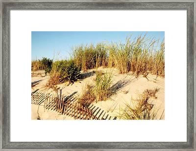 Sand Dune IIi - Jersey Shore Framed Print