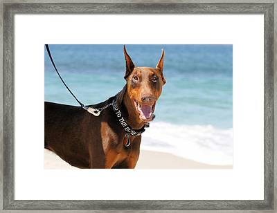 Sand In My Eyes Framed Print by Renae Laughner