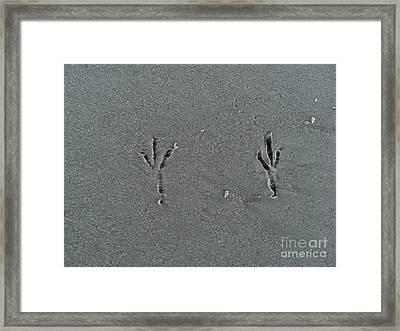 Sand Prints Framed Print by Jennifer Kelly