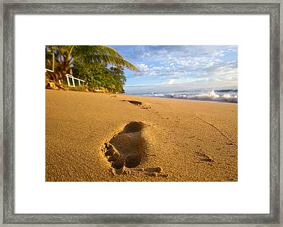 Sand Prints Framed Print by Tim Fitzwater