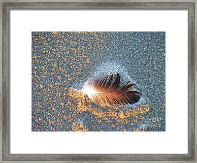 Framed Print featuring the photograph Sand Sculptured Feather  by Michele Penner