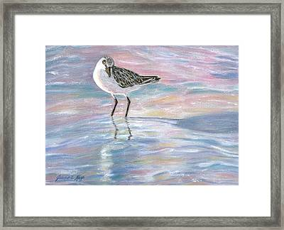 Sandlinger At Sunset Framed Print