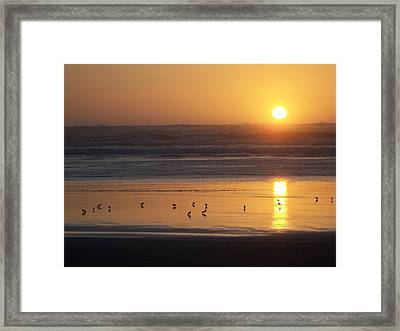 Framed Print featuring the photograph Sandpipers At Sunset by Peter Mooyman