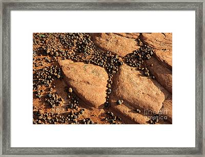 Sandstone And Pebbles Framed Print by Gary Whitton
