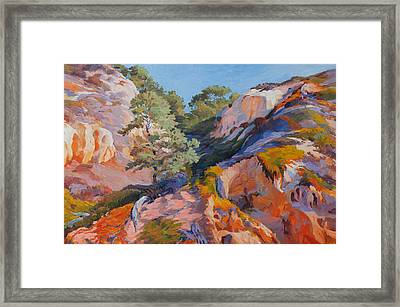 Sandstone Canyon At Torrey Pines Framed Print