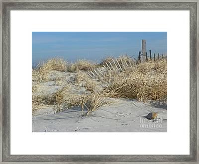 Sandy Neck Beach Framed Print by John Doble