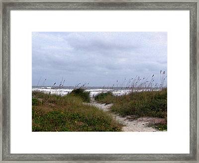 Sandy Path To The Beach Framed Print by Patricia Taylor