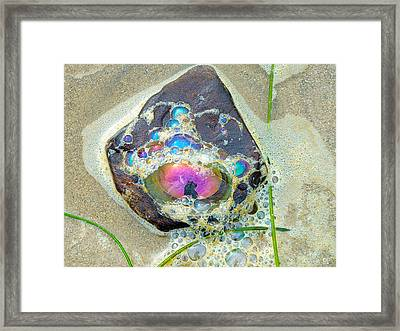 Santa Barbara Beach Framed Print by Linda Pope