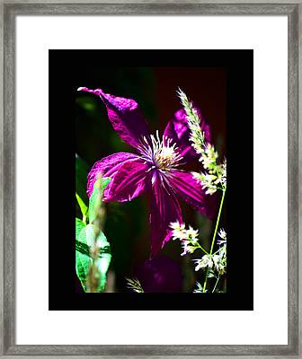 Framed Print featuring the photograph Santa Fe Summer by Susanne Still