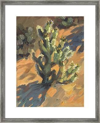 Santa Rosa Cholla Framed Print