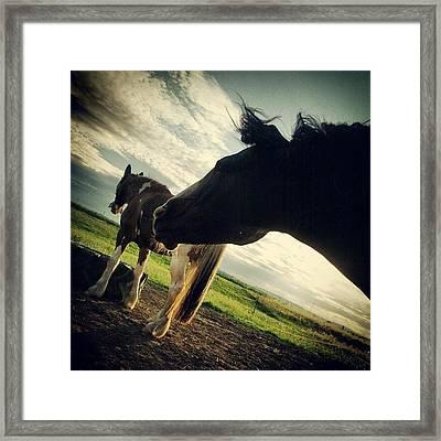 Santana And Naela Framed Print